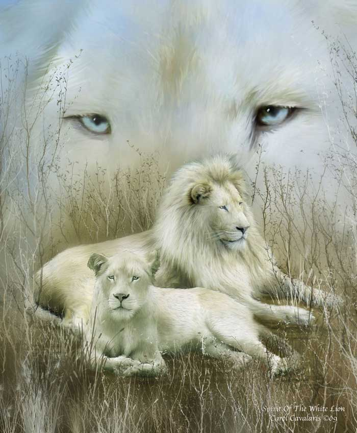 Spirit Of The White Lion