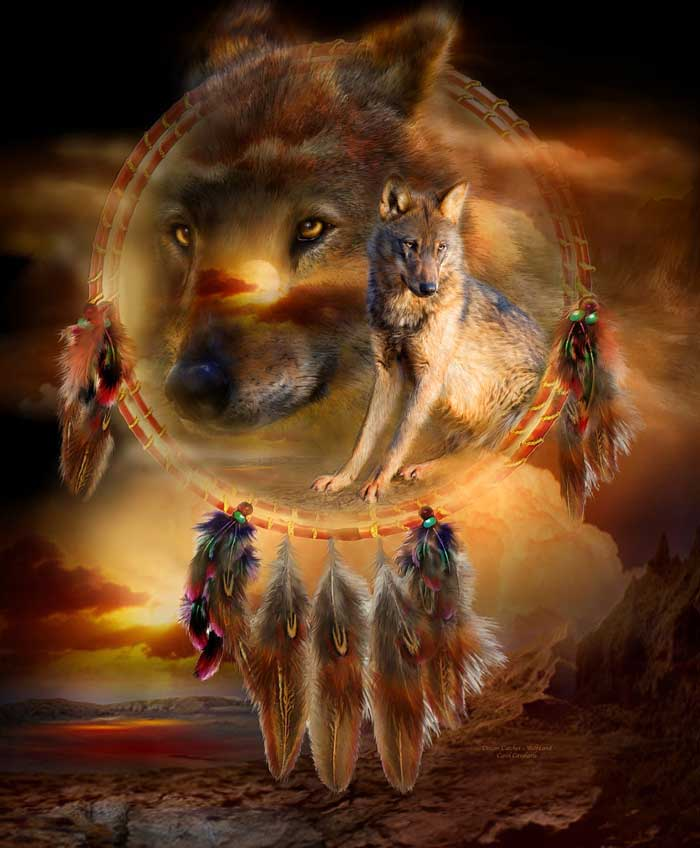 Spirit Of The Wild Series Dream Catcher Wolfland