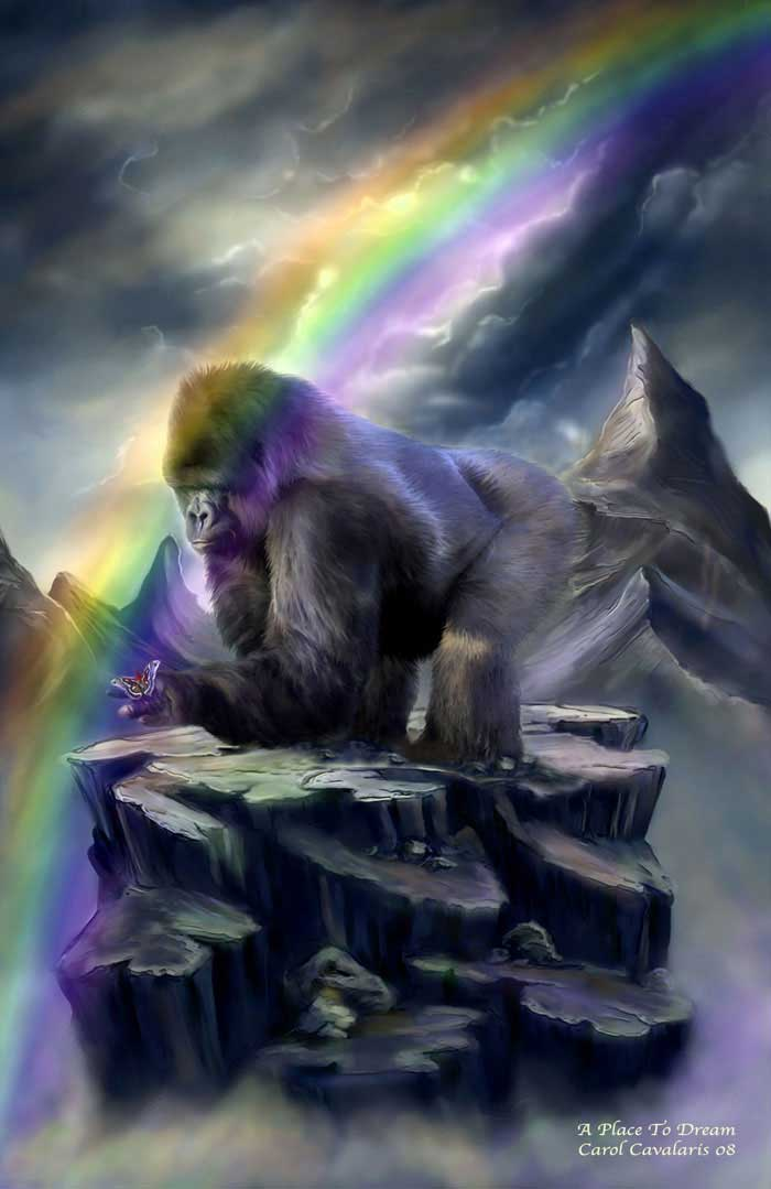Gorilla And Rainbow