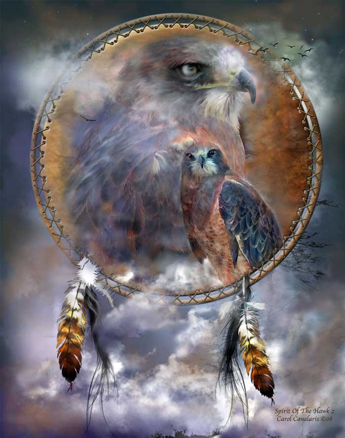 Spirit Of The Hawk Two