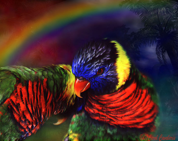 Rainbow Lovers