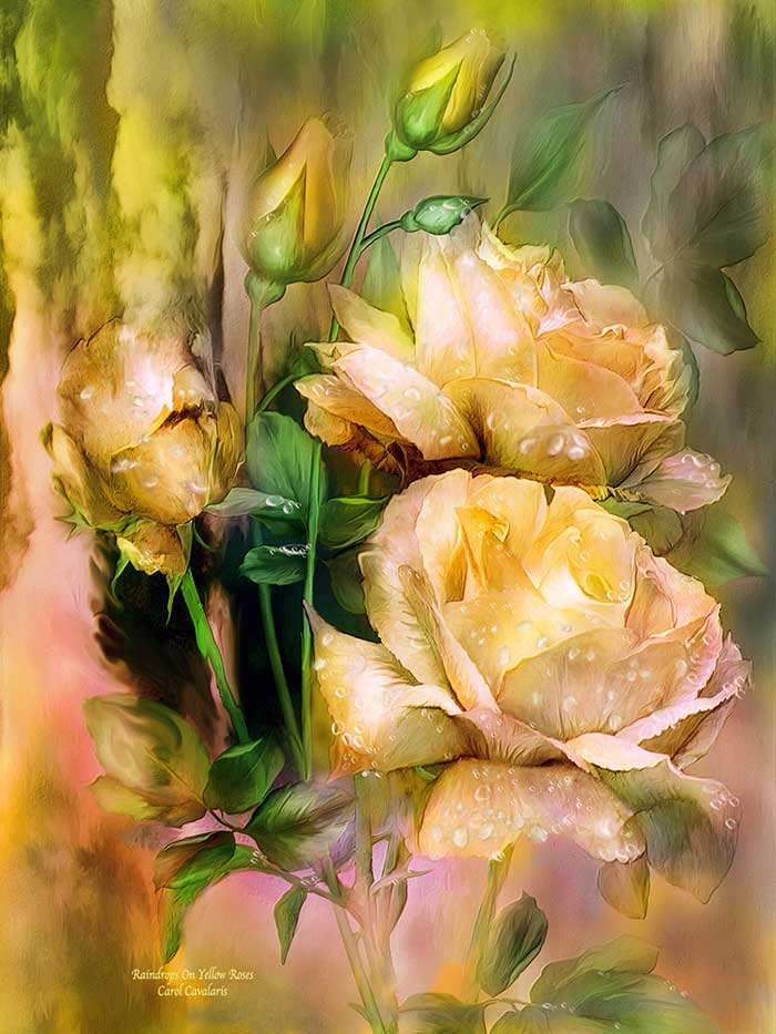 Language of flowers series raindrops on yellow roses raindrops on yellow roses mightylinksfo