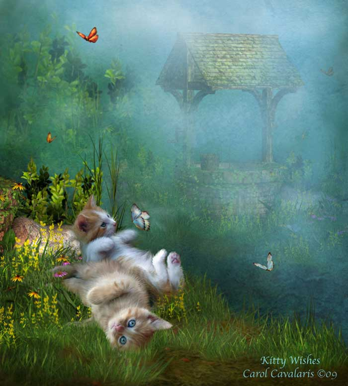 special pets series kitty wishes two kittens rolling in grass and
