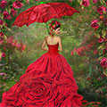 Woman In The Rose Gown