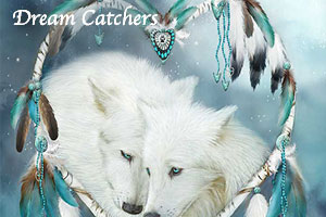 Dream Catcher Series