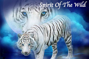 Spirit Of The Wild Series